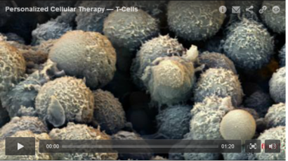 Cellular-therapy