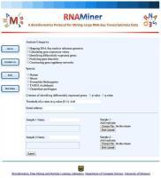 RNAMiner