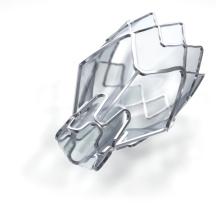 zephyr-valve