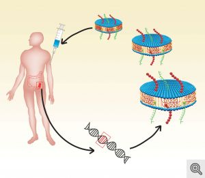 nanodisc-cancer-therapy
