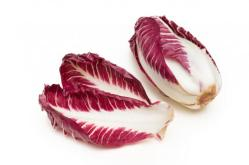 red-chicory