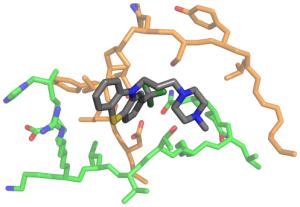 modello_molecolare