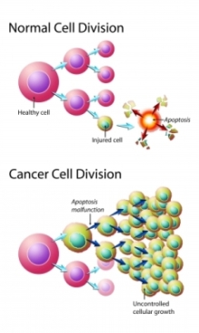 growth-cancer-cells