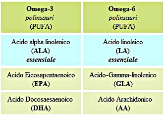Tabella-acidi-grassi