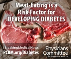 meat-eating-diabetes