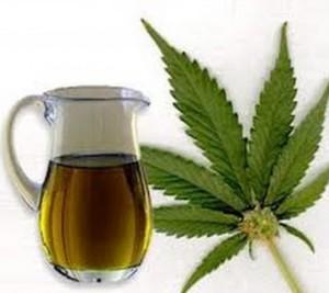 olio-di-cannabis
