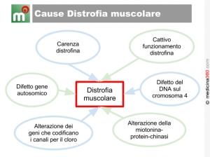 distrofia-muscolare
