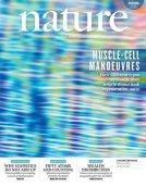 nature-v551