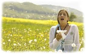 riniti-allergiche