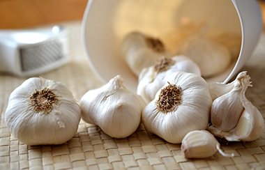 Garlic_380