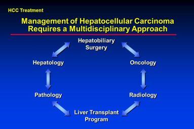 Liver-Transplant