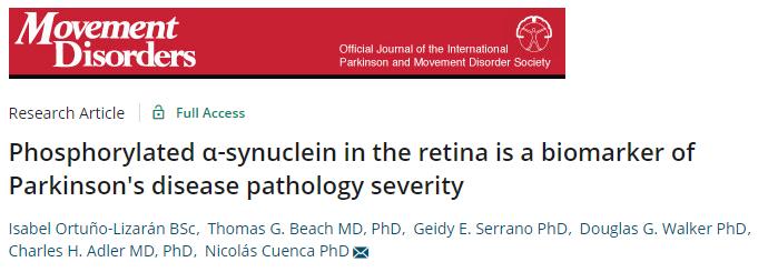 α‐synuclein in the retina