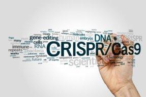 CRISP-CAS9