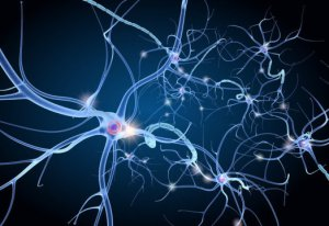 neuron-pain