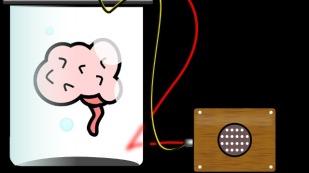 brain-signals