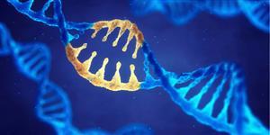 gene_therapy_AMD_macular_degeneration