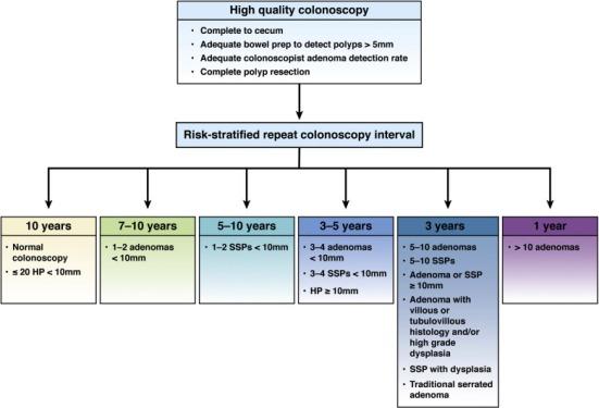 guidelines-postcolonscopy